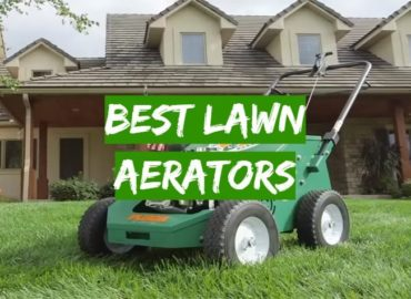 5 Best Lawn Aerators