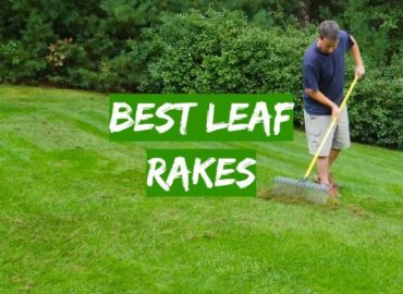 5 Best Leaf Rakes
