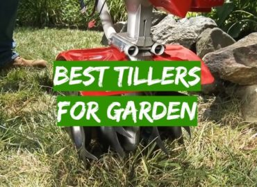 5 Best Tillers for Garden