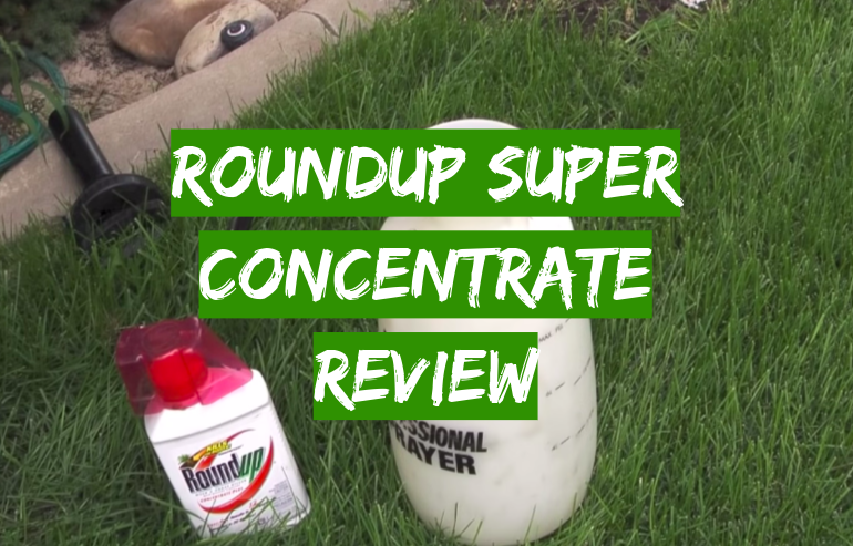 Roundup Weed And Grass Killer Review In 2020 Grass Killer