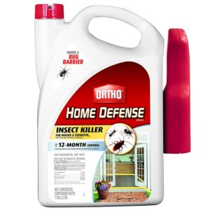 Ortho 0196710 Home Defense MAX Insect Killer Spray for Indoor and Home Perimeter