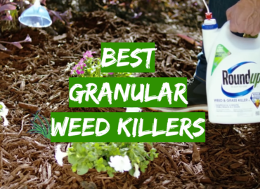 Best Granular Weed Killers
