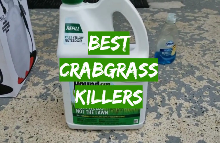 5 Best Crabgrass Killers