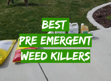 5 Best Pre Emergent Weed Killers
