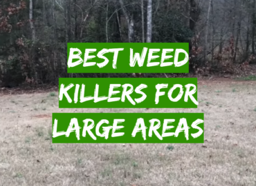5 Best Weed Killers For Large Areas