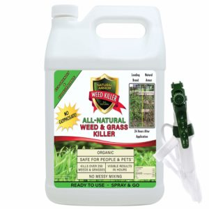 Natural Armor Weed & Grass Killer All-Natural Concentrated Formula. Contains No Glyphosate