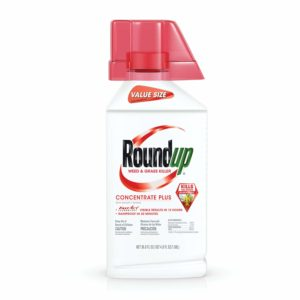 Roundup Weed & Grass Killer Concentrate Plus Value Size