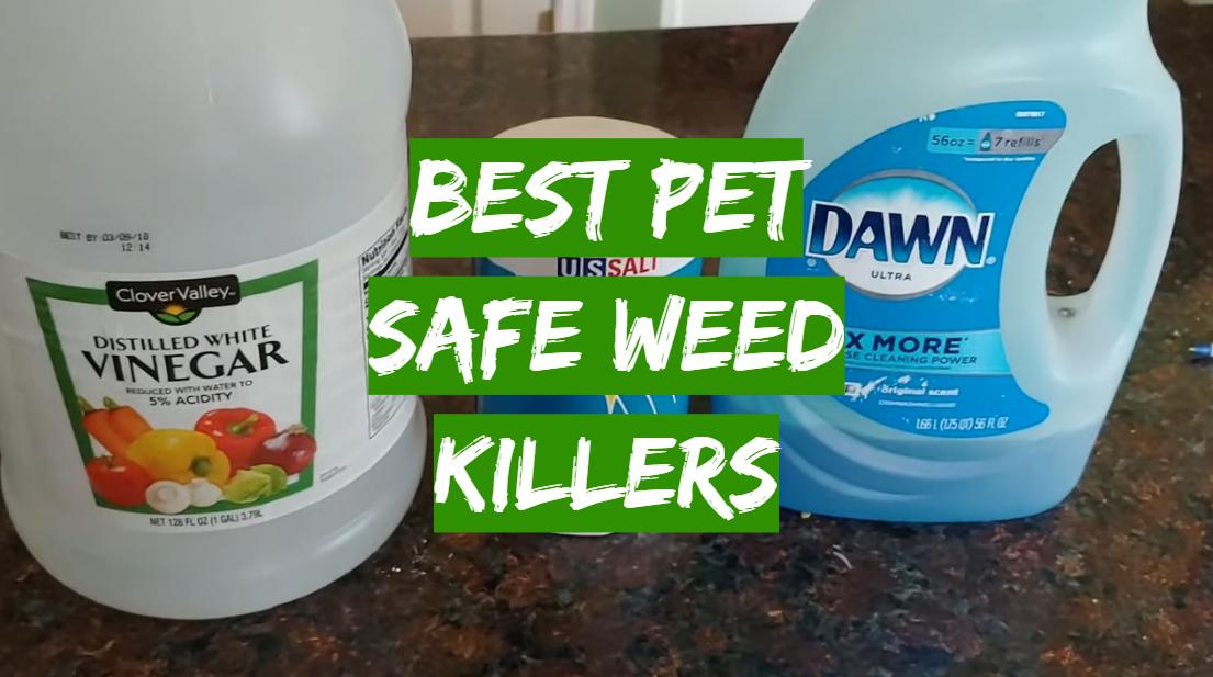 Best Pet Safe Weed Killers