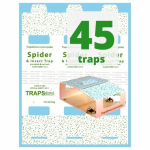 45 Insect & Spider Traps