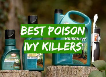 Best Poison Ivy Killers