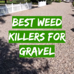 Best Weed Killers For Gravel