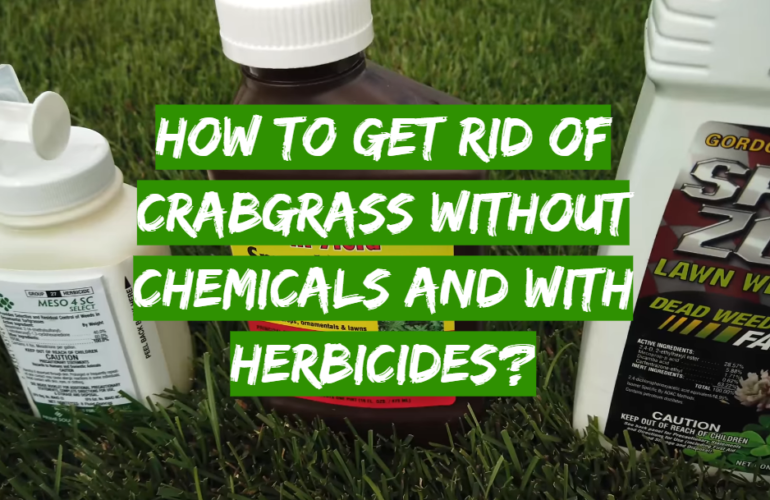 How to Get Rid of Crabgrass without Chemicals and with Herbicides?