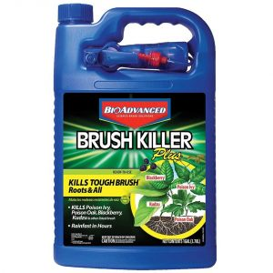 BioAdvanced 704655A Brush Killer Plus