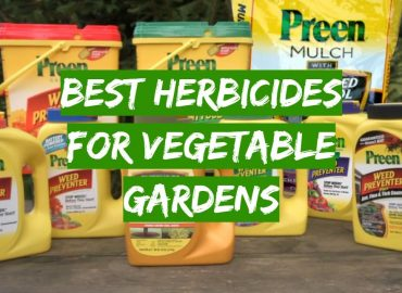 Best Herbicides for Vegetable Gardens