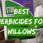 Best Herbicides for Willows