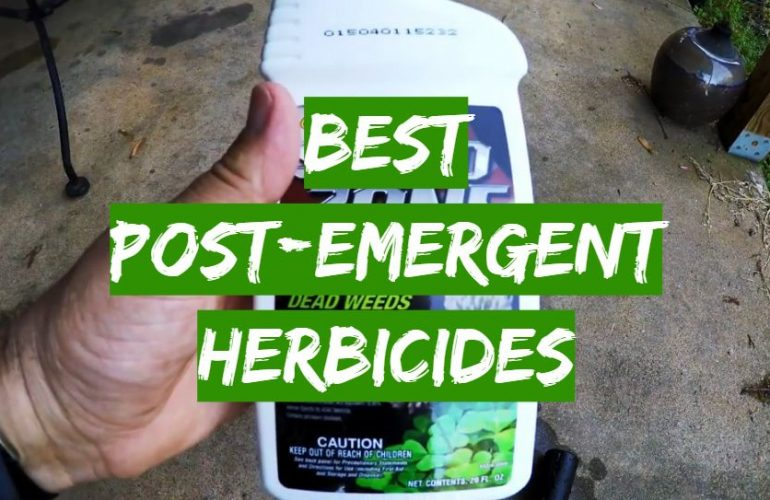 5 Best Post-Emergent Herbicides