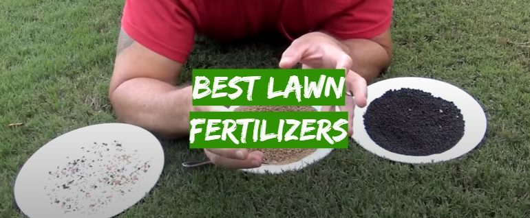 5 Best Fall Lawn Fertilizers