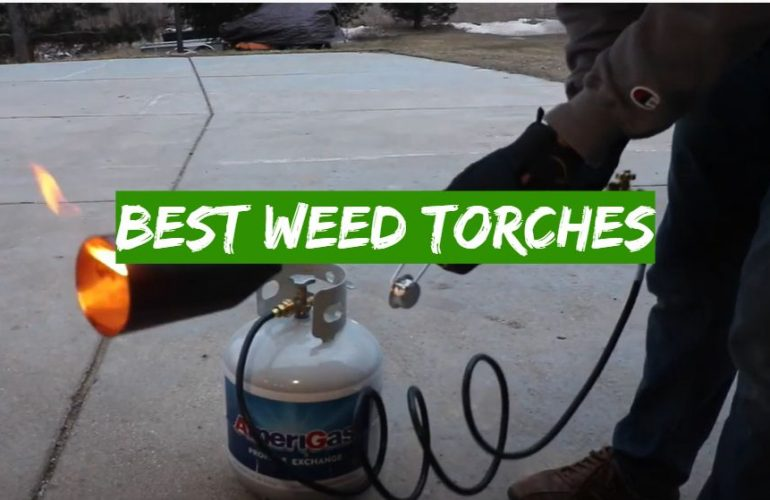 5 Best Weed Torches