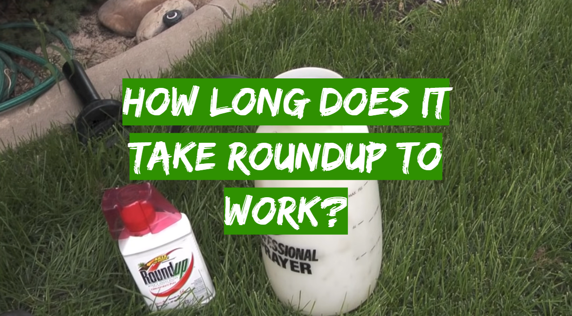 How Long Does It Take Roundup To Work?